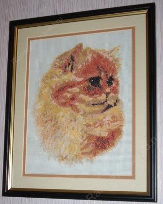 Вышивка Персидский кот Для